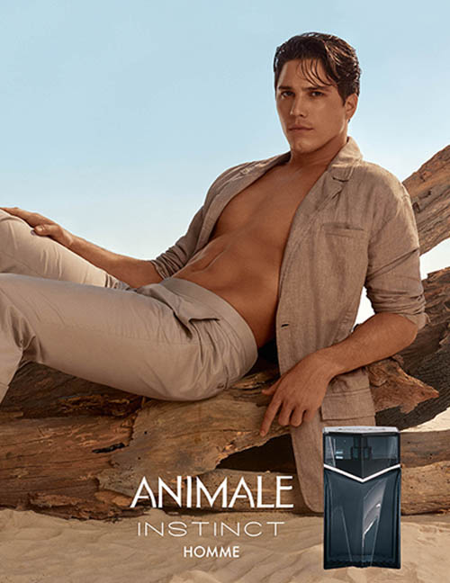 Animale Homme